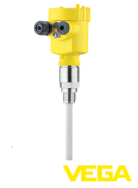 capacitive-rod-probe-cl63-xxfgdhvmxx-1.png