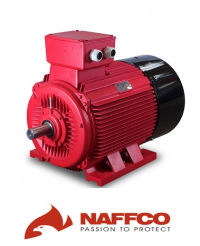 electric-motor-naffco.png