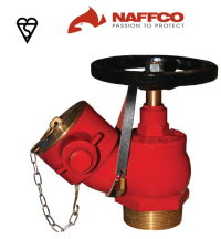 ndr-097-oblique-landing-valve-male-threaded-inlet-naffco.png